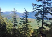 Maple Bay Lookout