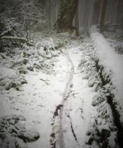 December on Mt Tzou