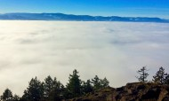 Bench View above the Fog
