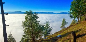 Summit View above the Fog
