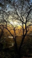 Winter Sunset on Ridge. Photo: Jeff Nicholls