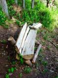 Bench on Crofton Lake beside beaver den